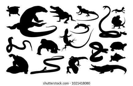 Set of Reptile silhouette vector illustration