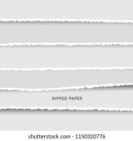 Set of Ripped and Torn Paper Stripes. Texture of Paper with Damaged Edge Isolated on Transparent background. Vector illustration.