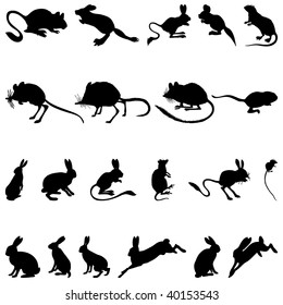 Set of Rodents  Silhouettes in Different Poses. High Detail, Very Smooth. Vector Illustration.