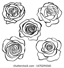 Set of rose flowers in doodle style. Silhouette of flowers, for cards, background, design.