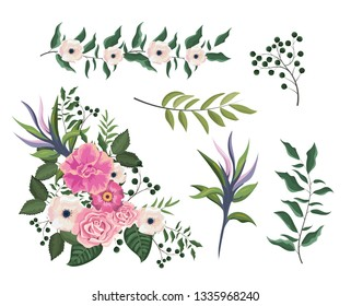 set roses and flowers plants with branches leaves