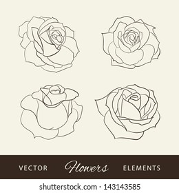 Set of roses. Vector illustration.