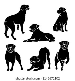 Set of Rottweiler dog silhouettes - isolated vector illustration