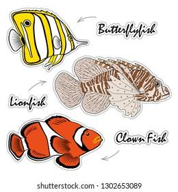 Set of Saltwater Aquarium Fish - Lionfish, butterflyfish, clown fish