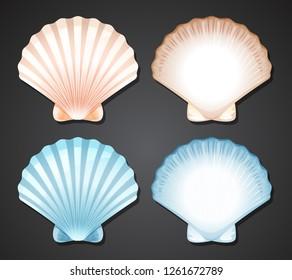 Set of scallop seashell illustration