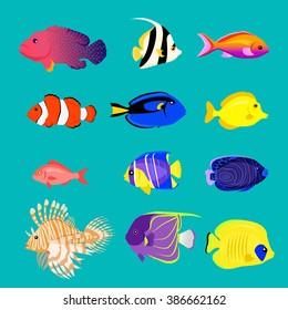 Set of sea fish color design flat. Ocean animal, nature cartoon wildlife aquarium, underwater life, exotic drawing marine fauna illustration