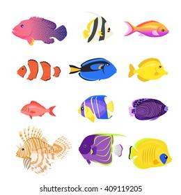 Set of sea fish color design flat. Ocean fish animal, nature cartoon wildlife aquarium, underwater life sea fish, exotic drawing marine fauna sea fish vector illustration