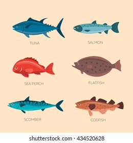 Set of sea fish: scomber, codfish, flatfish, sea perch, salmon, tuna. Fish vector set in flat style design. Ocean, sea fish icons collection isolated. Cute cartoon flat sea fishes.