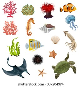 Set of sea life cartoon icons with fish coral seaweed shell  invertebrate vector illustration