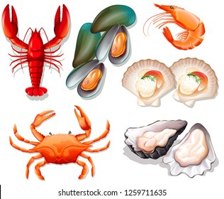 Set of seafood on white background illustration