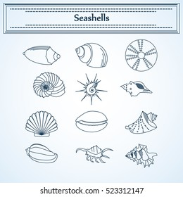 set of seashells in a linear style   For use as logos on cards, in printing, posters, invitations, web design and other purposes