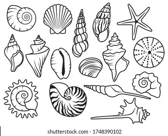 Set of seashells. Сollection of silhouette seashells with pearls. Vector illustration of mollusks. Drawing for children.