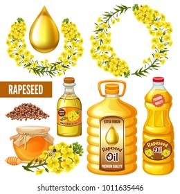 Set of seeds and rape flowers, canola oil, honey. Brassica napus. Isolated vector illustration  on white background.