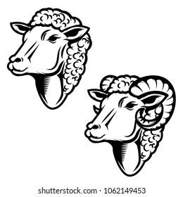 Set of sheep head illustration. Ram head. Design element for logo ,label, emblem, sign. Vector illustration