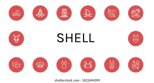 Set of shell icons. Such as Shark, Shellfish, Ammo, Sea, Shrimp, Shell, Swimsuit, Crab, Flippers, Lobster , shell icons