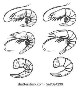 Set of shrimps icons isolated on white background. Seafood. Design elements for logo, label, emblem, sign, brand mark. Vector illustration.