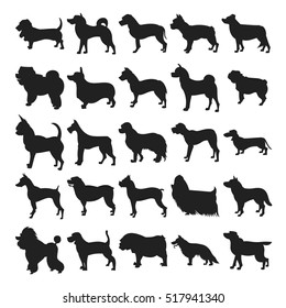 Set of silhouette dogs breeds