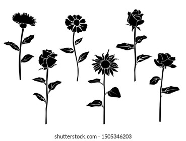 Set of silhouette flowers rose, daisy, chamomile, spring and summer forest and garden field flower, black color isolated on white background