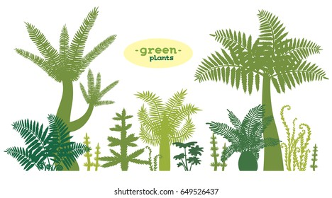 Set with silhouette of green plants on a white background. Vector illustration.