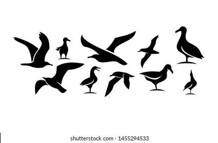 set of silhouette seagull bird ocean