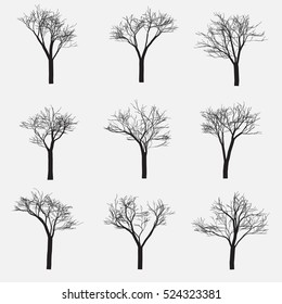 Set of Silhouette of tree with bare branches, vector illustration.