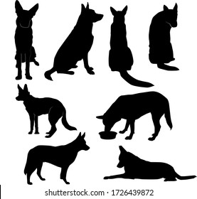 set of silhouettes of big dog in basic poses (sit, lie, profile, stand, front, back, eat), vector isolated on white background