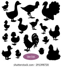 Set of silhouettes of birds on the farm (chicken, duck, turkey, goose)