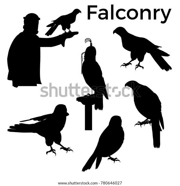 Set Silhouettes Birds Prey Vector Illustration Stock Vector Royalty Free 780646027