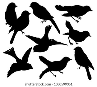 Set of silhouettes of birds. Wall sticker. Black and white graphic collection, set of silhouettes of birds on a white background.