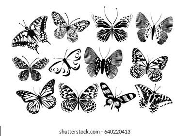 Set Silhouettes of butterflies. Vector