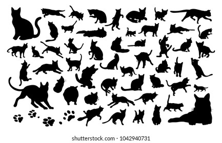 Set of silhouettes of the cats and the paw prints vector illustrations - Isolated on white background