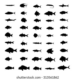set of silhouettes of fish isolated on a white background