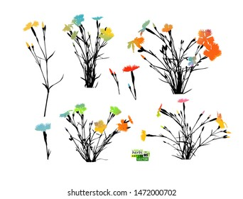 A set of silhouettes of flowers. carnation multi-colored flowers. Vector illustration