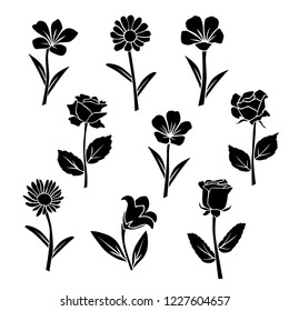 Set of silhouettes of flowers chamomile, rose,  lily, daisy, campanula, wild and garden  flowers, vector, black  color, isolated on white background