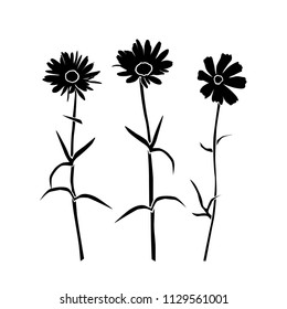 Set of silhouettes of flowers daisies, carnations, vector, black color, isolated on white background