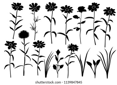 Set of silhouettes of flowers daisies, carnations, rose, wild and garden flowers, vector, black  color, isolated on white background