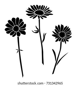 Set of silhouettes of flowers daisies, carnations,chamomile, vector, black color, isolated on white background