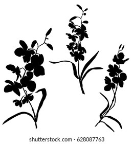 Set of silhouettes of flowers, orchids,twig,  vector, black color, isolated on white background, hand drawing