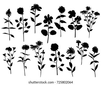 Set of silhouettes of flowers, rose, chamomile, dandelion, isolated on white background
