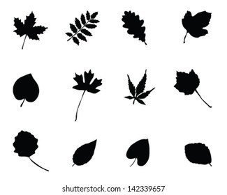 Set of silhouettes of foliage 2-vector