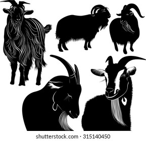 set of silhouettes of goat