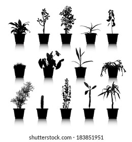 Set of silhouettes house plants in pots