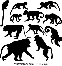 set of silhouettes of monkeys