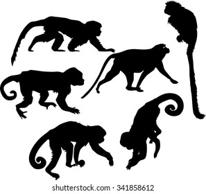 set of silhouettes of monkeys