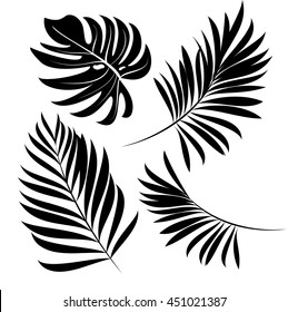 Set of silhouettes of palm fronds in black on a white background