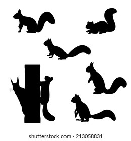 Set of silhouettes of squirrels. Vector illustration.