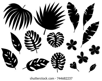 Set of silhouettes of tropical palm leaves