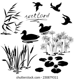 Set of silhouettes of water plants and ducks.