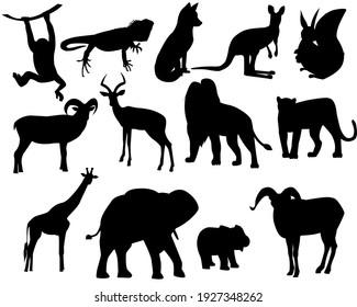Set of silhouettes of wild animals, zoo.