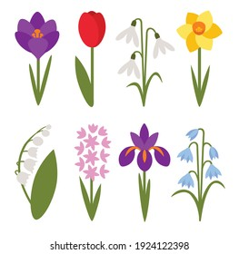 A set of simple icons of spring flowers: crocus, tulip, snowdrop, lily of the valley, daffodil, iris, cockerel, hyacinth
